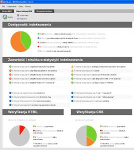 WebSite Auditor - raport